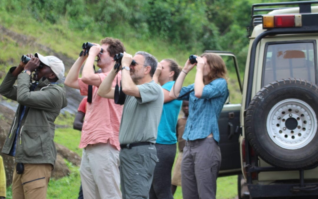 Group Birding Tours in Kenya