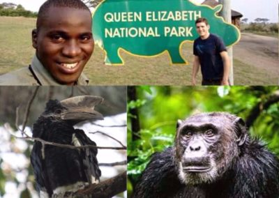Tailor-made Uganda Birding Tours