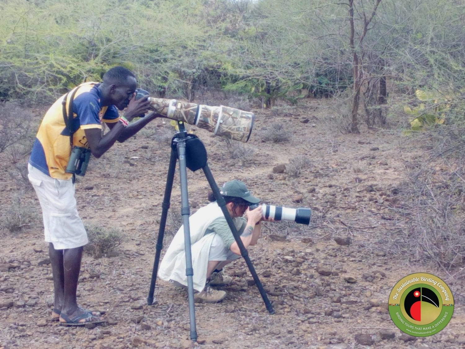 Looking for the best photo on one of our Uganda BIrding Tours