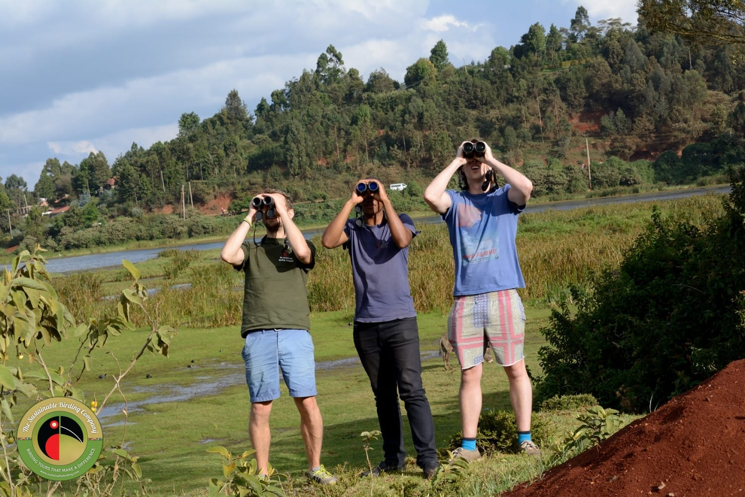 Join us on a birding day tour in Uganda