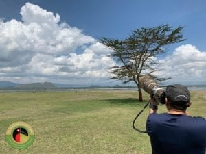 Join us on our incredible Uganda Birding Tours