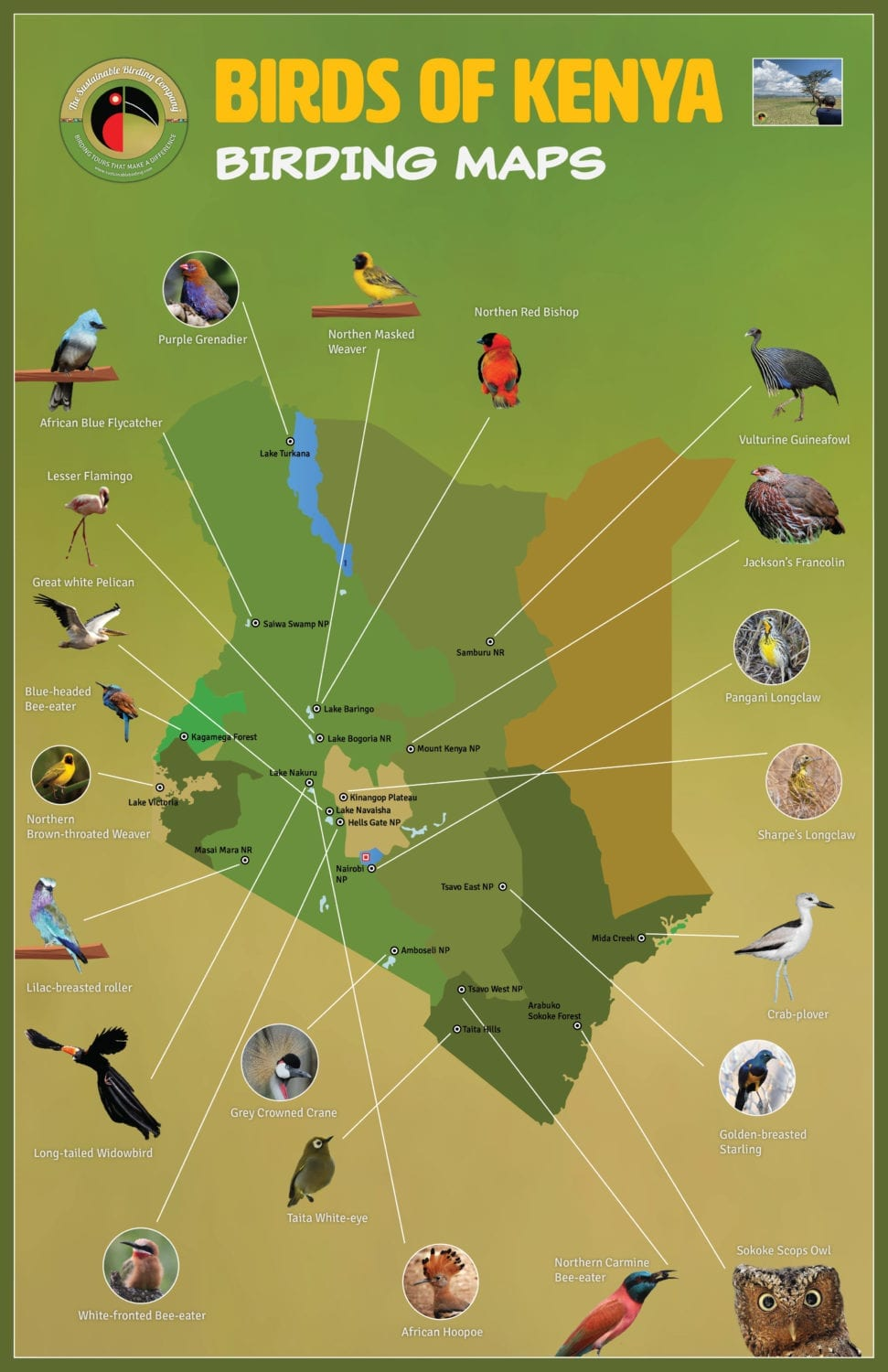 Birdwatching Map of Kenya